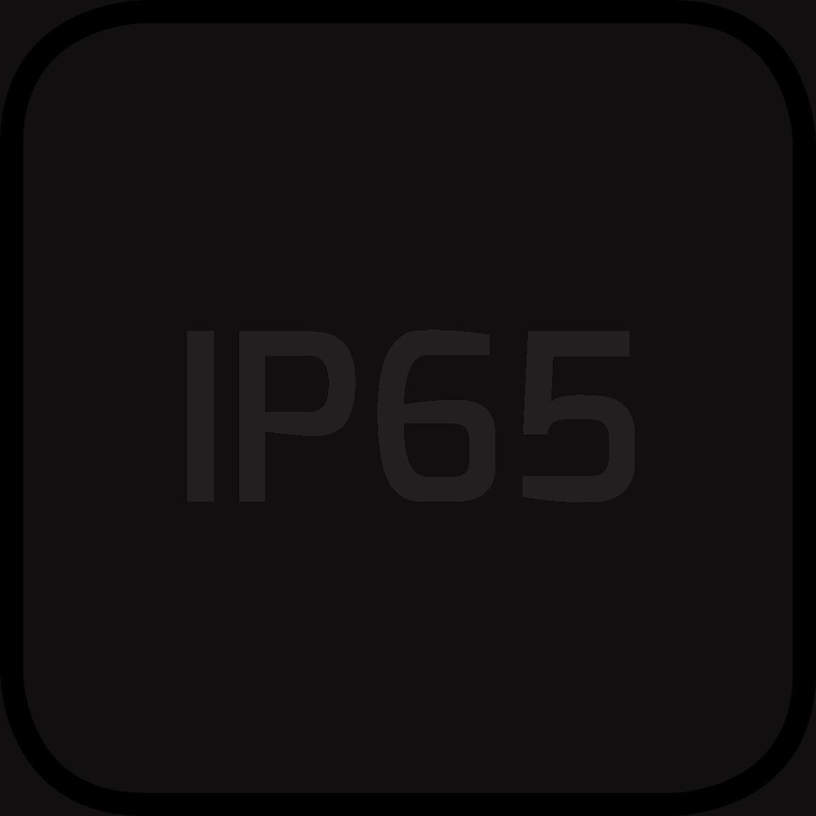 IP65-rev