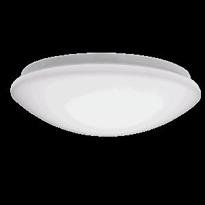 Oyster Light